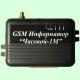 GSM Информатор Часовой-1
